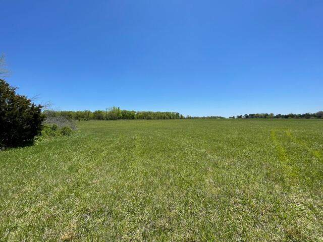 Tract 3 Eagles Roost Drive, Mountain Grove, MO 65711 (MLS #60190019) :: Tucker Real Estate Group   EXP Realty