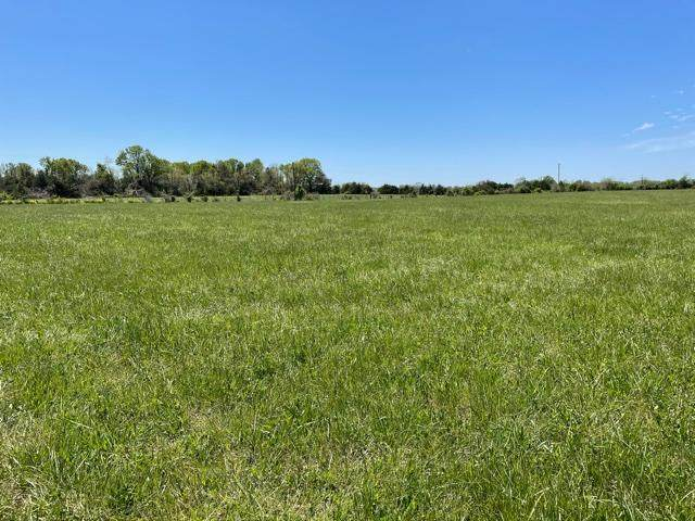 Tract 4 Eagles Roost Drive, Mountain Grove, MO 65711 (MLS #60190020) :: Tucker Real Estate Group   EXP Realty