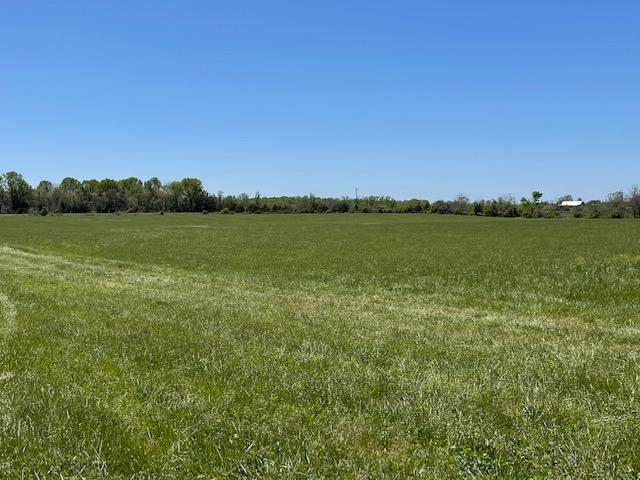 Tract 5 Eagles Roost Drive, Mountain Grove, MO 65711 (MLS #60190021) :: Clay & Clay Real Estate Team