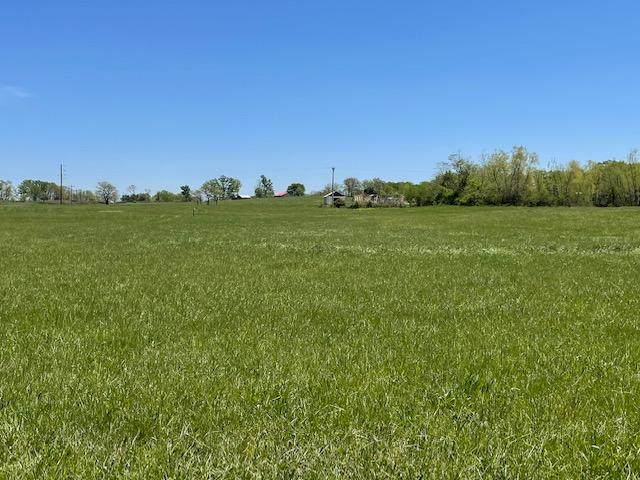 Tract 6 Eagles Roost Drive, Mountain Grove, MO 65711 (MLS #60190023) :: Clay & Clay Real Estate Team