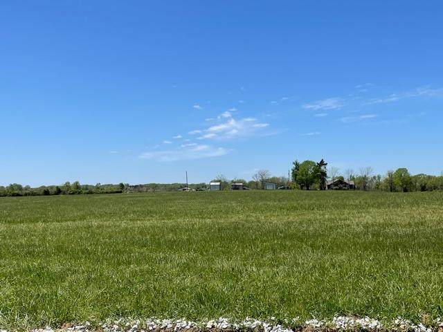 Tract 7 Eagles Roost Drive, Mountain Grove, MO 65711 (MLS #60190024) :: Clay & Clay Real Estate Team