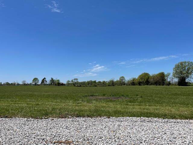 Tract 8 Eagles Roost Drive, Mountain Grove, MO 65711 (MLS #60190025) :: The Real Estate Riders