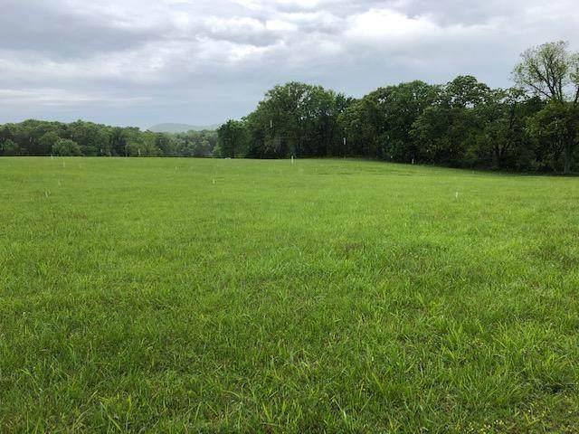 000 Tbd Farm Road 2285, Eagle Rock, MO 65641 (MLS #60190609) :: Clay & Clay Real Estate Team