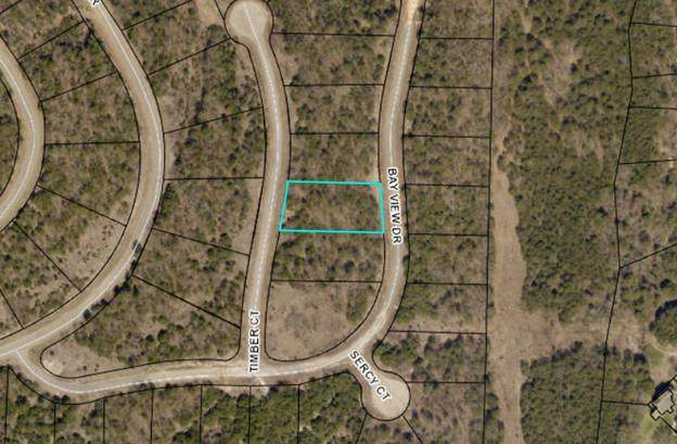 000 Lot 207 Timber Court, Hollister, MO 65672 (MLS #60191081) :: Clay & Clay Real Estate Team
