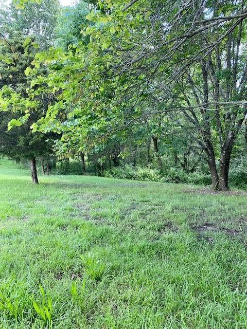 000 Northwoods Drive, Kimberling City, MO 65686 (MLS #60192289) :: Lakeland Realty, Inc.