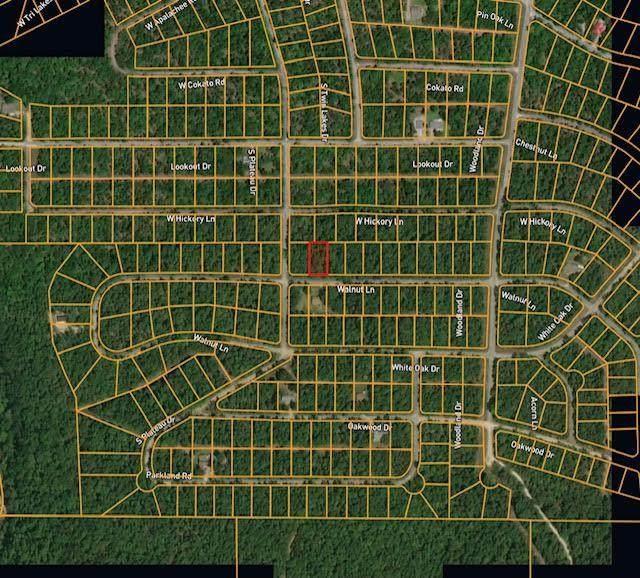 906 Walnut Lane, Horseshoe Bend, AR 72512 (MLS #60192904) :: Sue Carter Real Estate Group