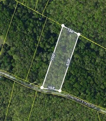 Lot 14 Mountain Estate Drive, Blue Eye, MO 65611 (MLS #60193946) :: Sue Carter Real Estate Group