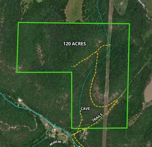000 Mease Drive 120 Ac, Reeds Spring, MO 65737 (MLS #60194189) :: Lakeland Realty, Inc.
