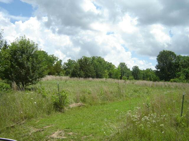 000 Country Club Drive Lane, Houston, MO 65483 (MLS #60194484) :: The Real Estate Riders