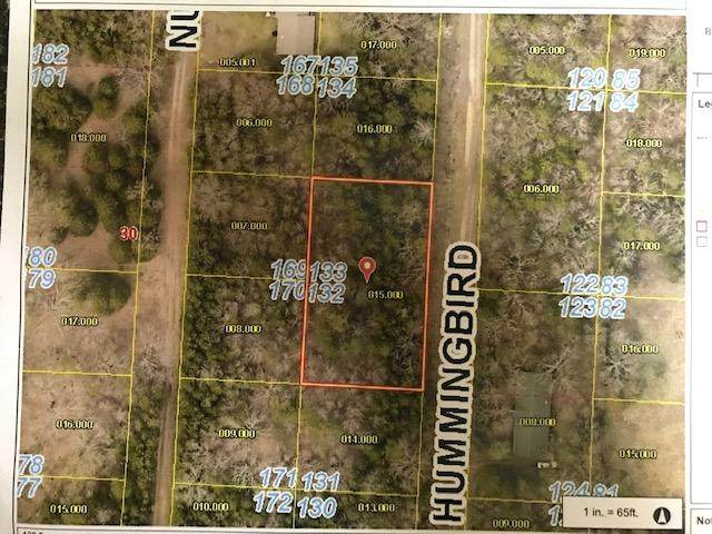 000 Hummingbird Lane, Shell Knob, MO 65747 (MLS #60194864) :: Sue Carter Real Estate Group