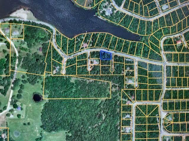 109 Pioneer, Horseshoe Bend, AR 72512 (MLS #60194937) :: The Real Estate Riders