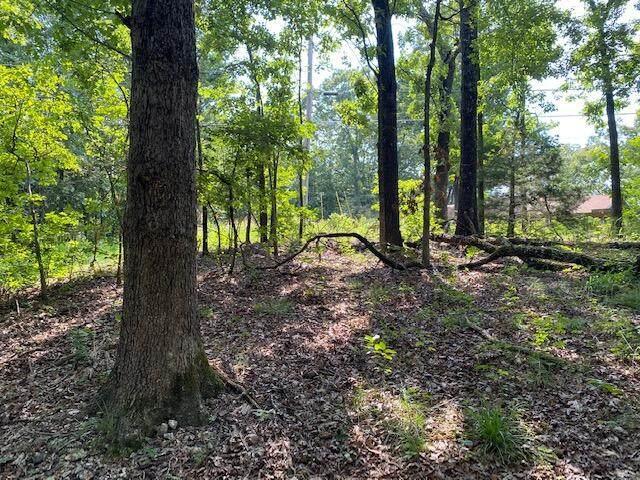 Lot 4 & 5 Talking Rocks Road, Branson West, MO 65737 (MLS #60195267) :: Tucker Real Estate Group | EXP Realty
