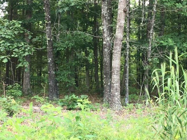7590 Ridge Crest Trail, Raymondville, MO 65555 (MLS #60195668) :: Sue Carter Real Estate Group