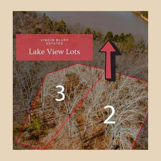 Lot 2 Judy Lane, Galena, MO 65656 (MLS #60196080) :: Lakeland Realty, Inc.