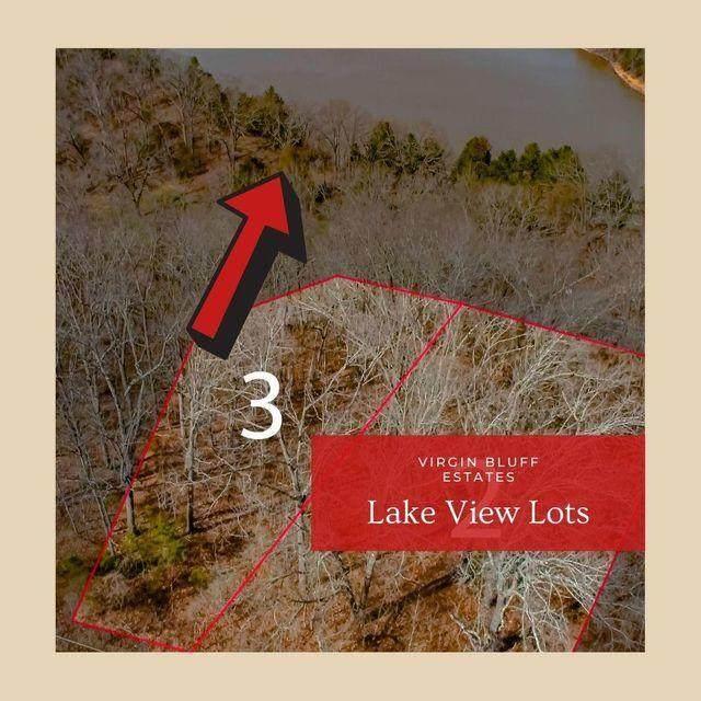Lot 3 Judy Lane, Galena, MO 65656 (MLS #60196081) :: Lakeland Realty, Inc.