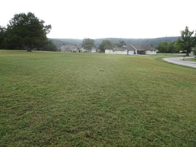 Lot 15 Farm Road 1255, Golden, MO 65658 (MLS #60196642) :: The Real Estate Riders