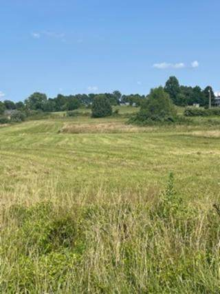 Lot 1 Clearview Estates, Marshfield, MO 65706 (MLS #60196908) :: Team Real Estate - Springfield