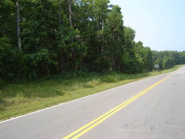 000 Highway 32, Licking, MO 65542 (MLS #60197331) :: Team Real Estate - Springfield