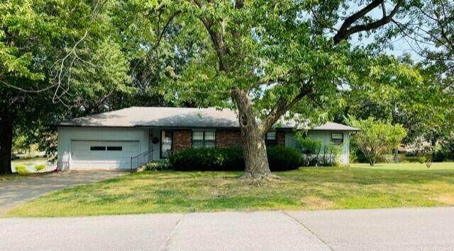 2213 William H Drive, Neosho, MO 64850 (MLS #60200014) :: Sue Carter Real Estate Group