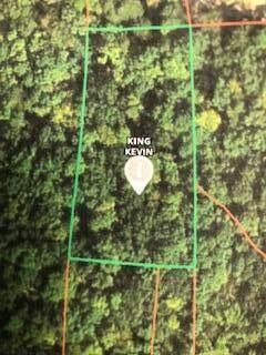 000 Arrowhead Beach, Hermitage, MO 65668 (MLS #60200510) :: Team Real Estate - Springfield