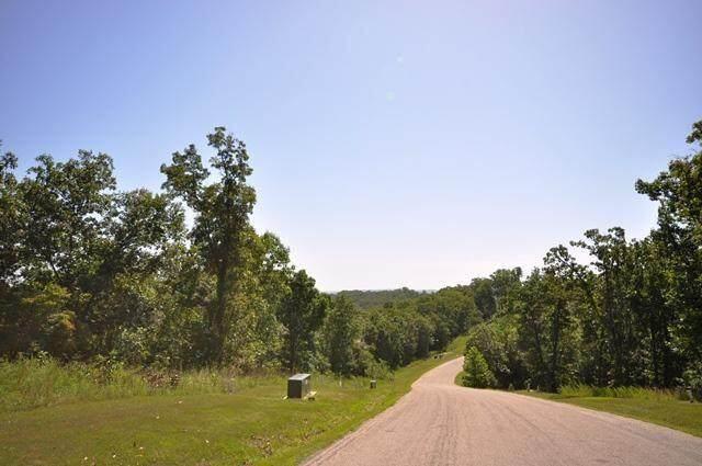 1768 Emory Creek Boulevard, Branson, MO 65615 (MLS #60201212) :: Lakeland Realty, Inc.