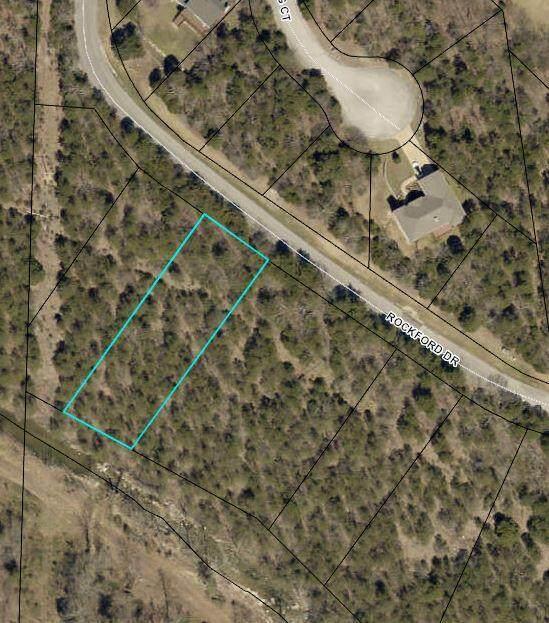 320 W Rockford Drive, Branson, MO 65616 (MLS #60201671) :: Team Real Estate - Springfield