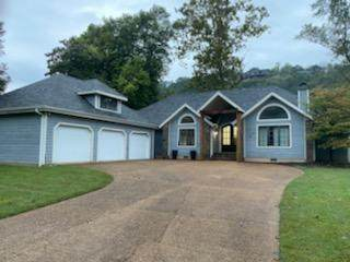 406 Foggy River Road, Hollister, MO 65672 (MLS #60202704) :: Sue Carter Real Estate Group