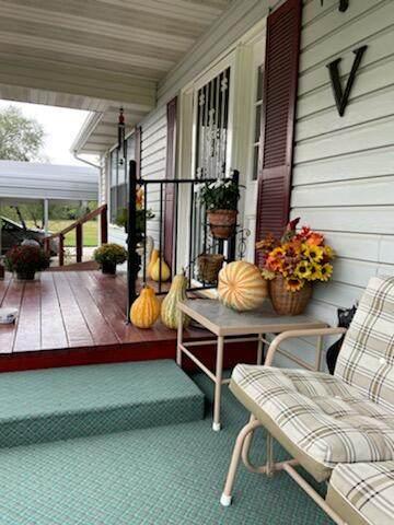 22380 Co Rd 181, Wheatland, MO 65779 (MLS #60203200) :: Sue Carter Real Estate Group