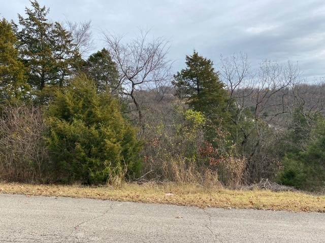 Lot 40 Hummingbird Hills Lane, Branson, MO 65616 (MLS #60203436) :: Sue Carter Real Estate Group
