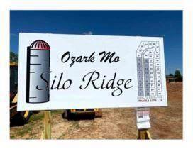 1606 E Silo Ridge Drive, Ozark, MO 65721 (MLS #60203994) :: The Real Estate Riders