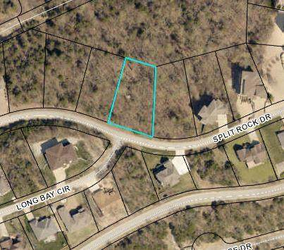 255 Split Rock Drive, Hollister, MO 65672 (MLS #60204071) :: The Real Estate Riders