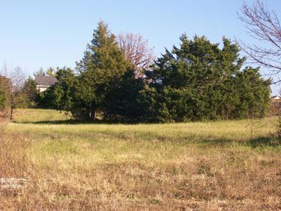 325 N Kellen Street #7, Fair Grove, MO 65648 (MLS #10726583) :: Sue Carter Real Estate Group