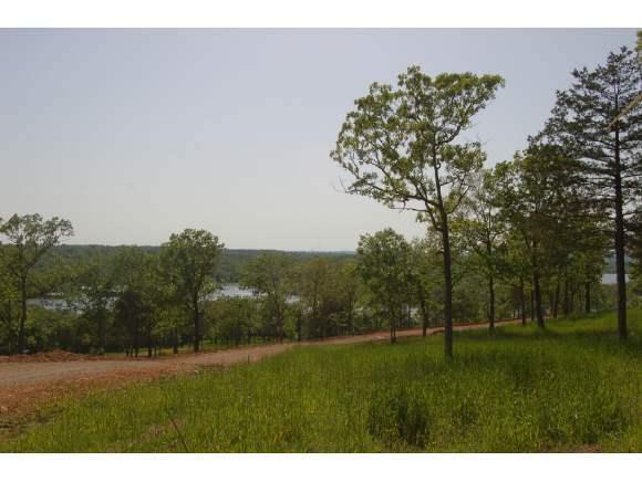 Lot 18 Cedar Bend, Shell Knob, MO 65747 (MLS #30355224) :: Sue Carter Real Estate Group