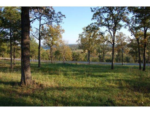 Lot 20 Timber Rock Road, Shell Knob, MO 65747 (MLS #30355227) :: Team Real Estate - Springfield