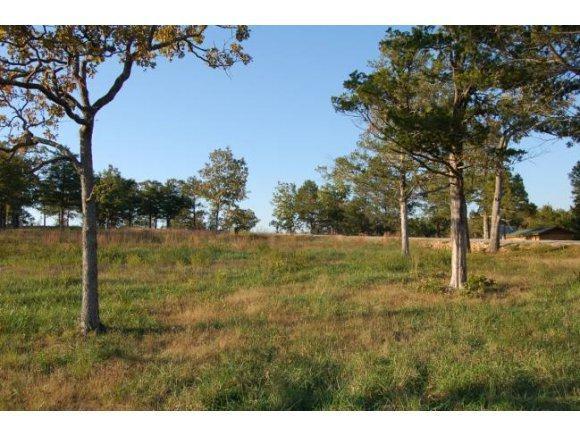 Lot 21 Timber Rock Road, Shell Knob, MO 65747 (MLS #30355228) :: Team Real Estate - Springfield
