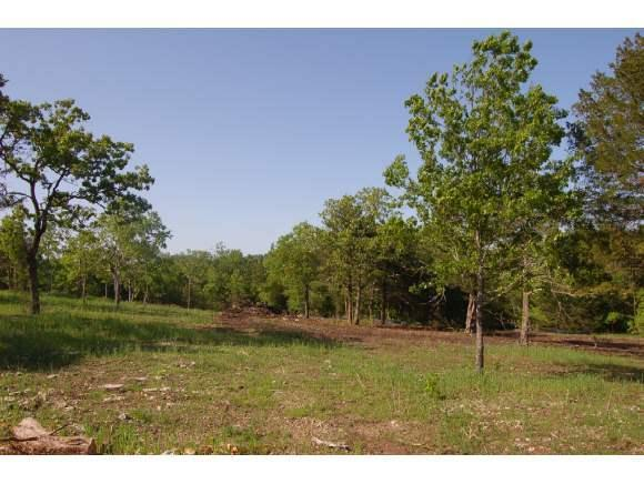 Lot 28 Timber Rock Road, Shell Knob, MO 65747 (MLS #30355232) :: Team Real Estate - Springfield
