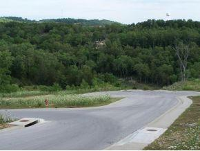 0 Sapling Drive, Branson, MO 65616 (MLS #30356231) :: Team Real Estate - Springfield