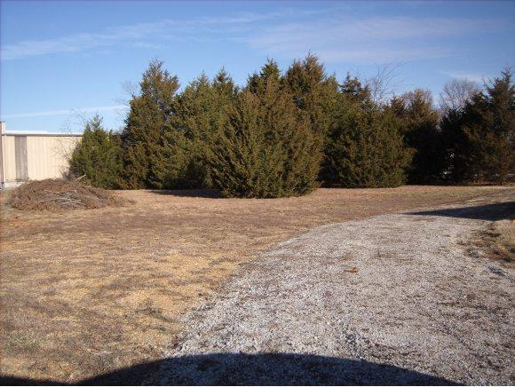 Lot 12 Bonanza Drive, Kimberling City, MO 65686 (MLS #30356281) :: Team Real Estate - Springfield