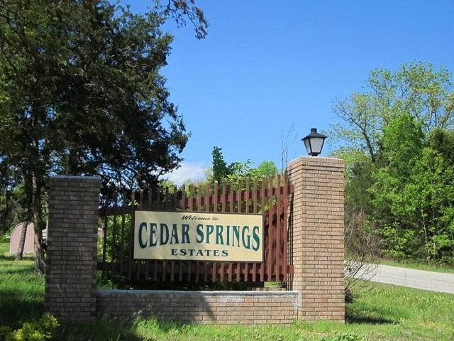 Lot #4 Cedar Springs Avenue, Kissee Mills, MO 65680 (MLS #60004787) :: Greater Springfield, REALTORS