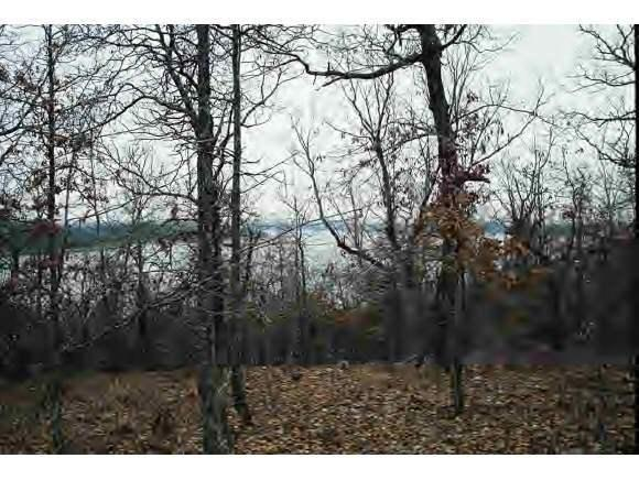 1.25 Acres Eagle Ridge Road, Lead Hill, AR 72644 (MLS #60017192) :: Sue Carter Real Estate Group