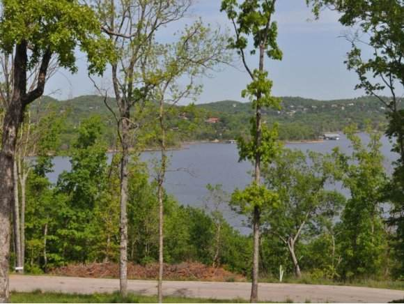 Lot 14 Whitefish Bay, Lampe, MO 65681 (MLS #60027433) :: The Real Estate Riders