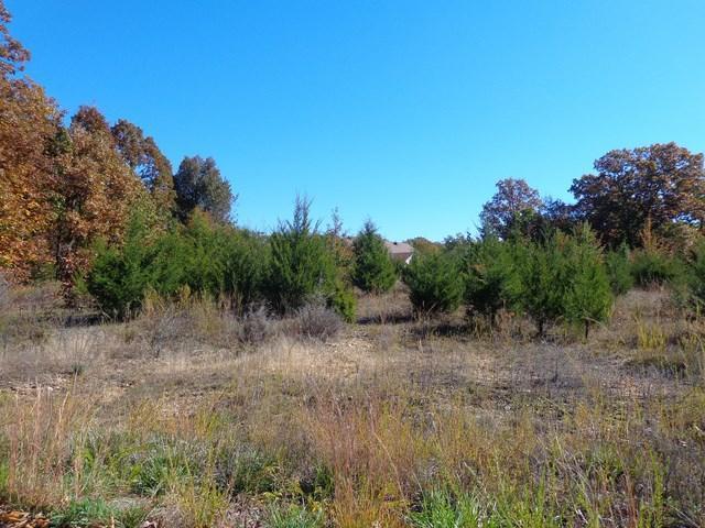 3000 Rhonda, West Plains, MO 65775 (MLS #60041804) :: Sue Carter Real Estate Group