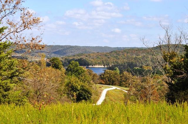 Tbd County Road 629, Green Forest, AR 72638 (MLS #60045456) :: Greater Springfield, REALTORS