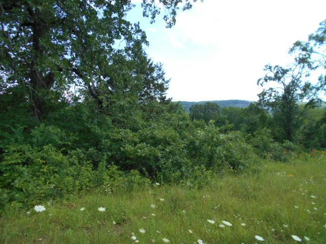 Lot 23 Bowhunter Lane, Galena, MO 65656 (MLS #60081273) :: The Real Estate Riders
