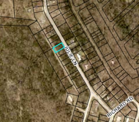 Tbd Julie Lane, Rockaway Beach, MO 65740 (MLS #60092872) :: Sue Carter Real Estate Group