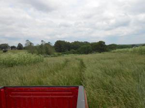 1234 Farm Road 2172 - Photo 1