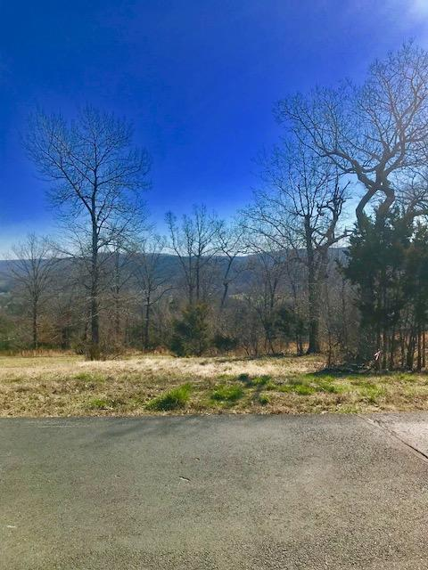 Lot 76 Mark Twain Drive, Saddlebrooke, MO 65630 (MLS #60103027) :: Greater Springfield, REALTORS