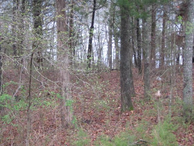 Lot 4 Crystal Beach Circle, Shell Knob, MO 65747 (MLS #60106409) :: Weichert, REALTORS - Good Life