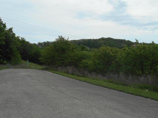 Lot 37 Hummingbird Hills Lane, Branson, MO 65616 (MLS #60108021) :: Team Real Estate - Springfield
