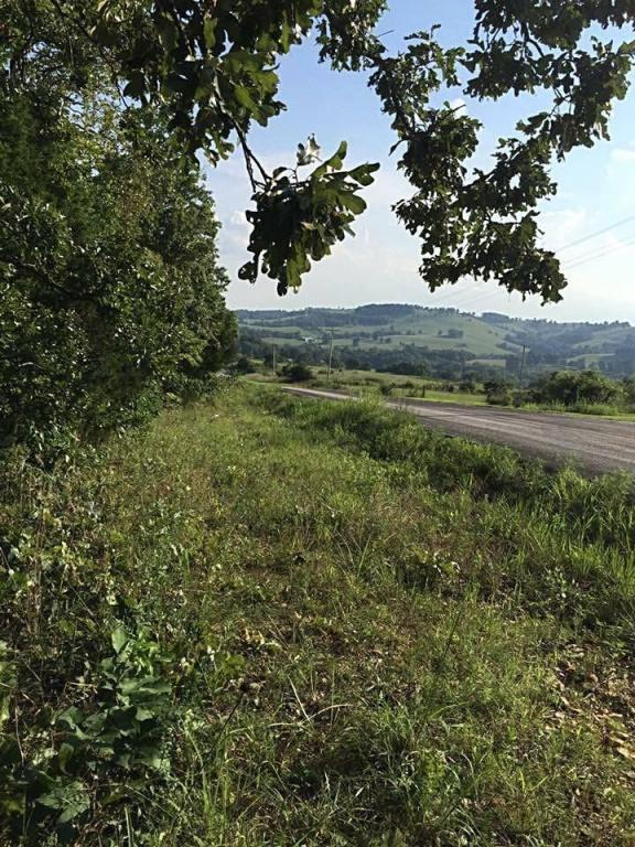 0 State Hwy Ak Tract 12, Ava, MO 65608 (MLS #60108056) :: Team Real Estate - Springfield